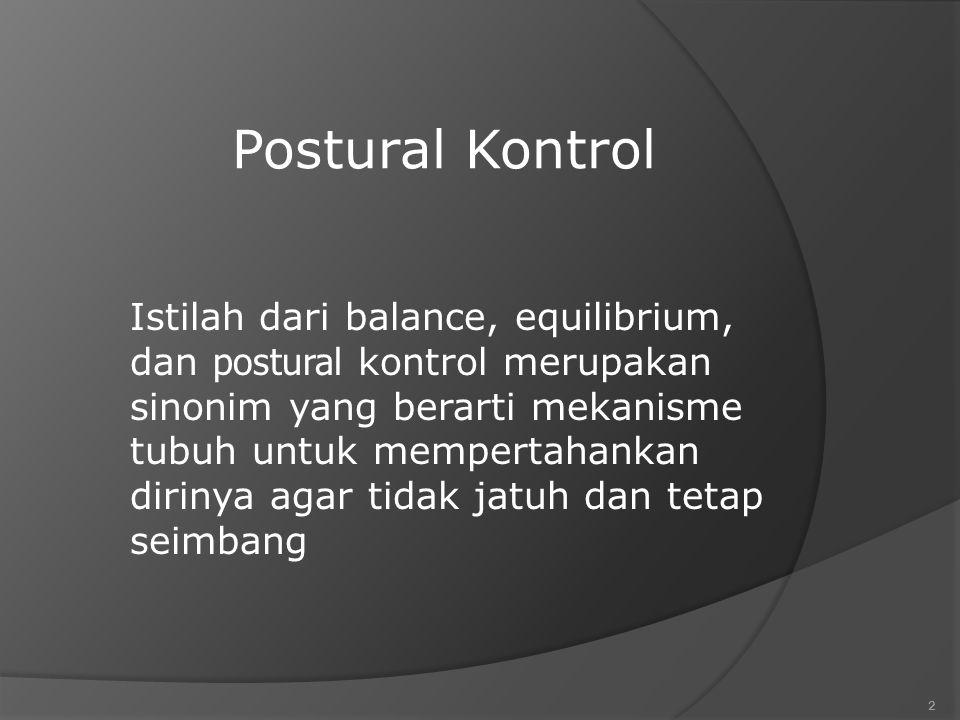 Postural Kontrol