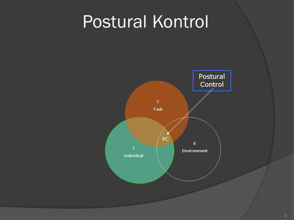 Postural Kontrol T Task E Environment I Individual
