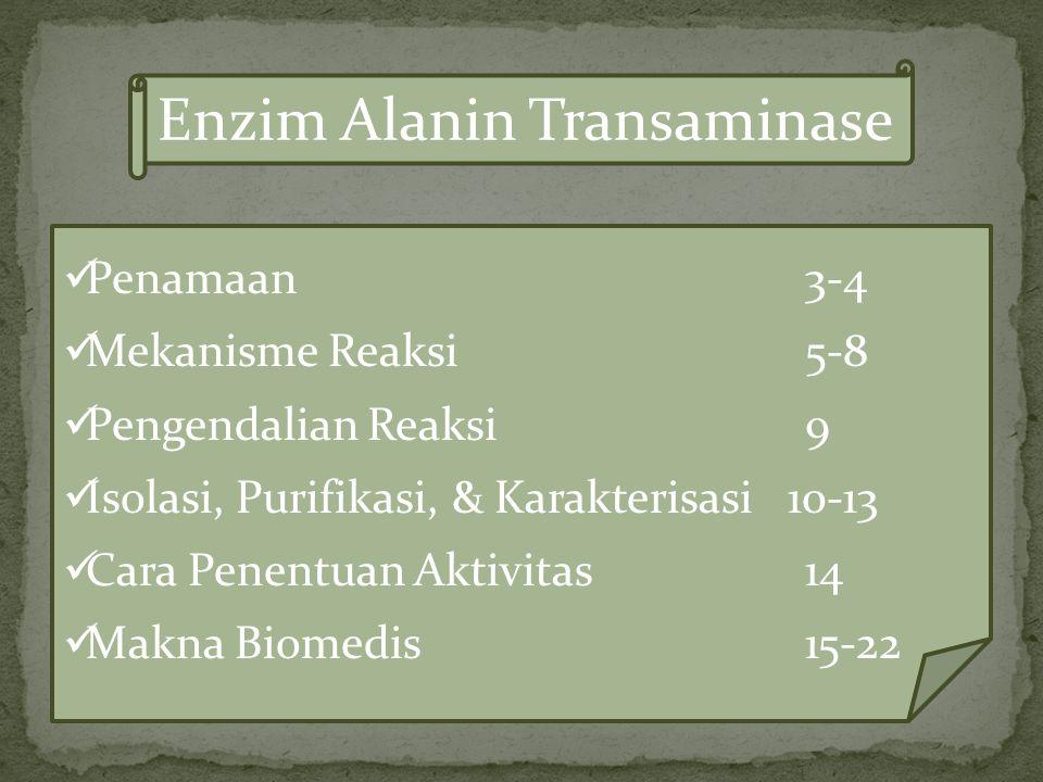 Enzim Alanin Transaminase