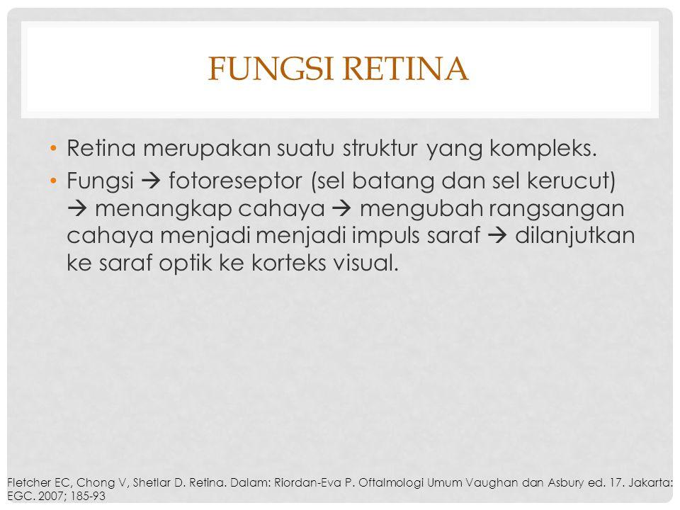 Fungsi Retina Retina merupakan suatu struktur yang kompleks.
