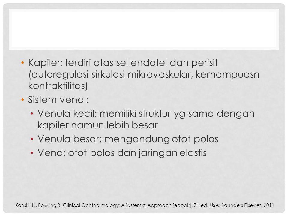 Venula besar: mengandung otot polos