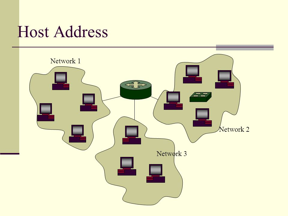 Host Address Network 1 Network 2 Network 3