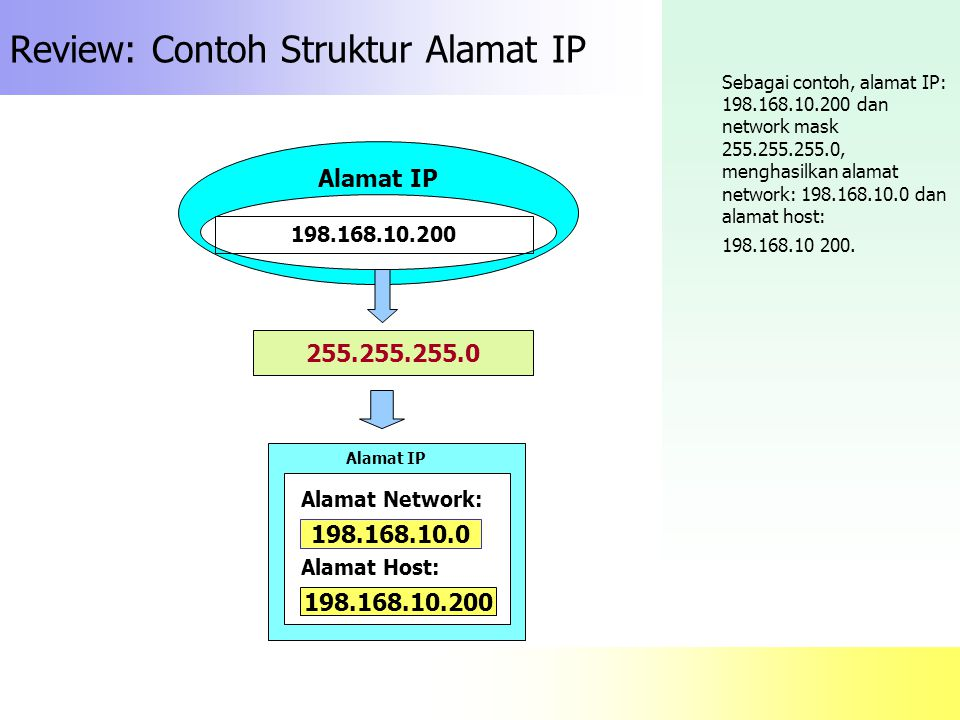 Review: Contoh Struktur Alamat IP