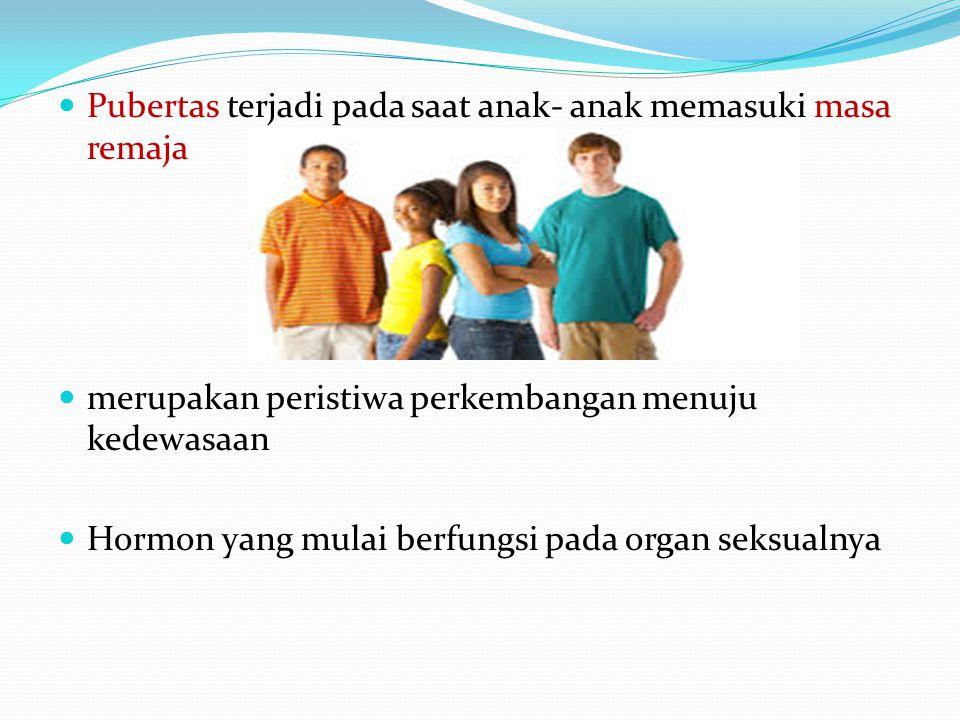 Pubertas terjadi pada saat anak- anak memasuki masa remaja