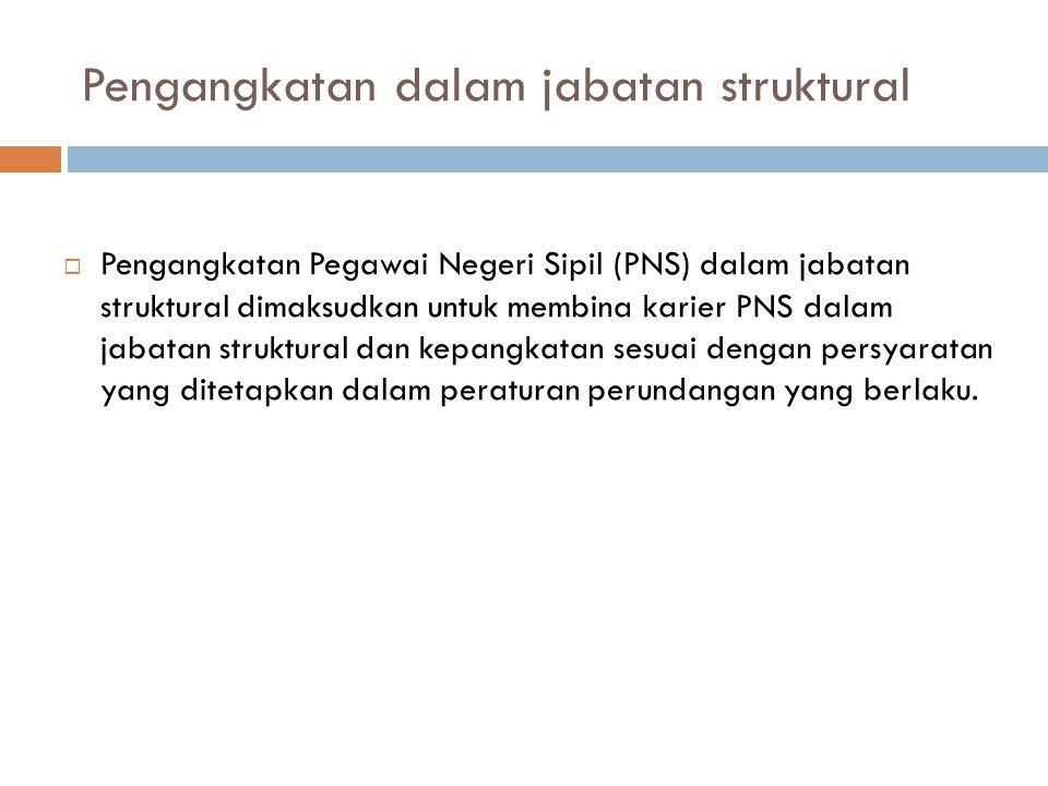 Pengangkatan dalam jabatan struktural