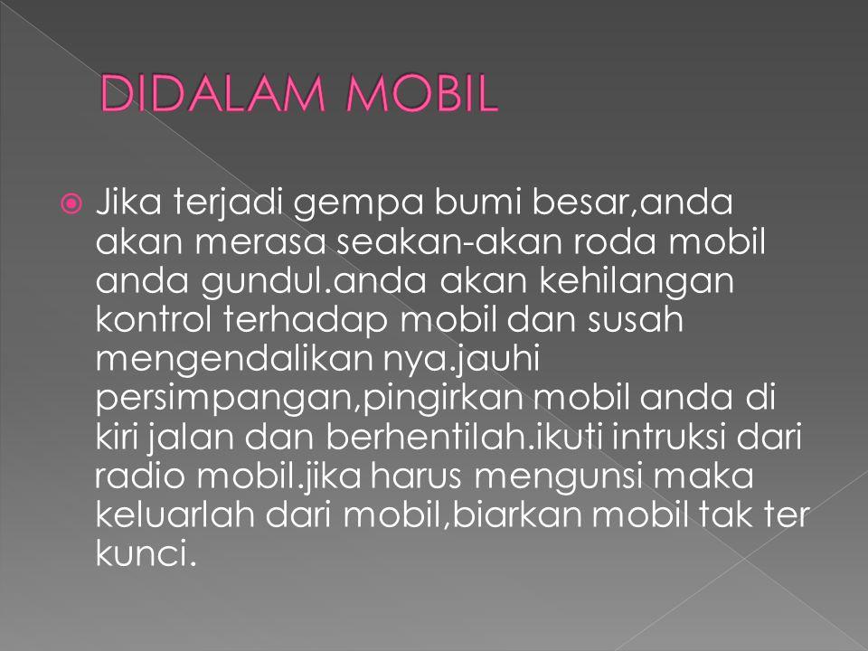 DIDALAM MOBIL