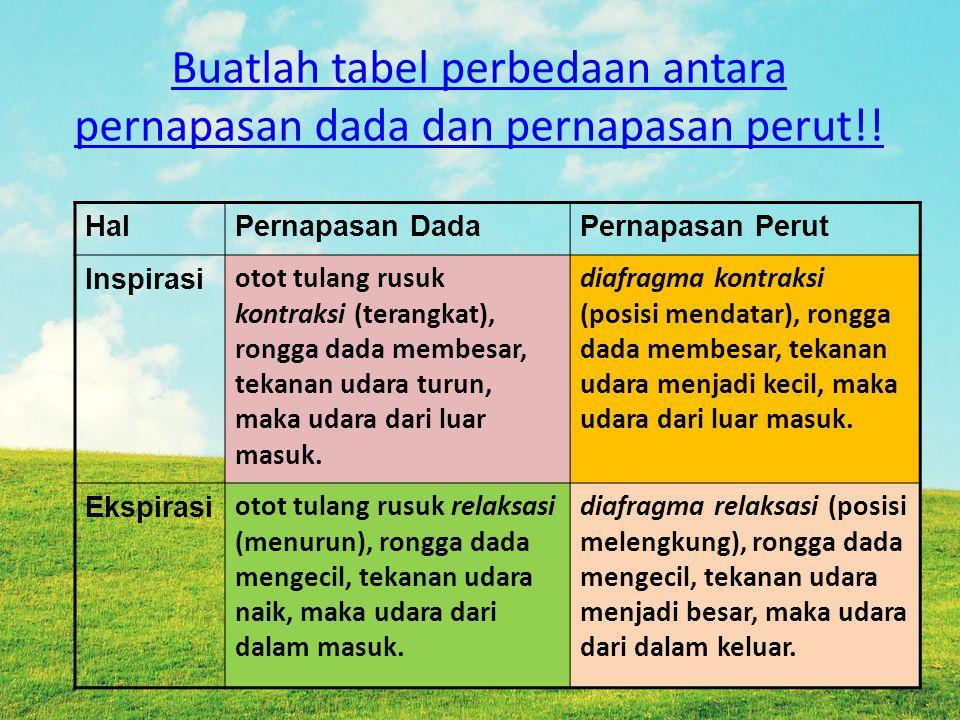 Buatlah tabel perbedaan antara pernapasan dada dan pernapasan perut!!