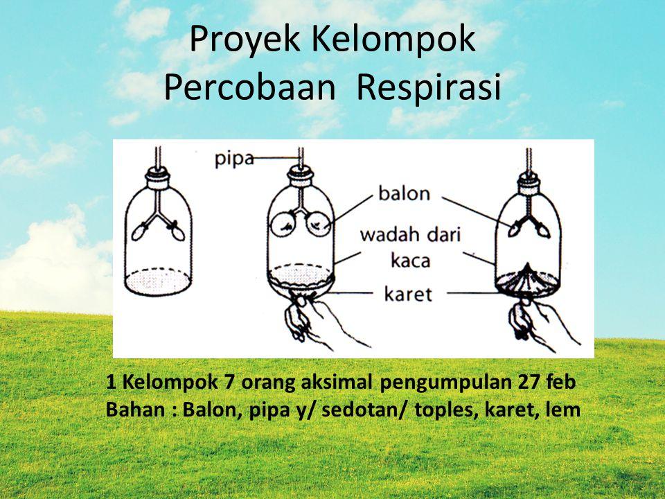 Proyek Kelompok Percobaan Respirasi