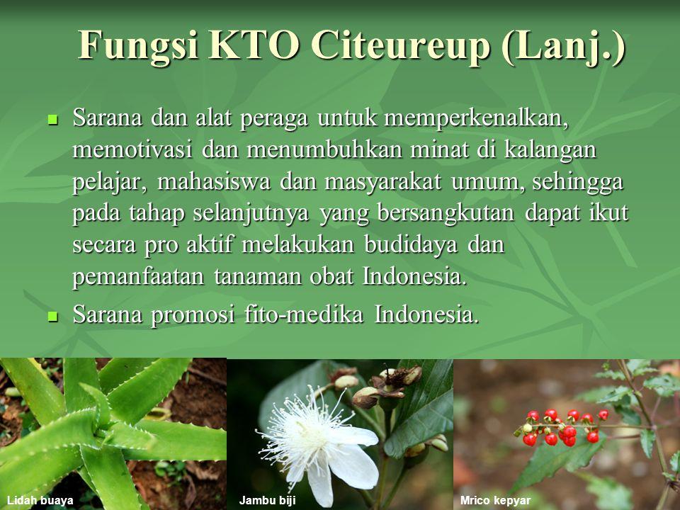 Fungsi KTO Citeureup (Lanj.)