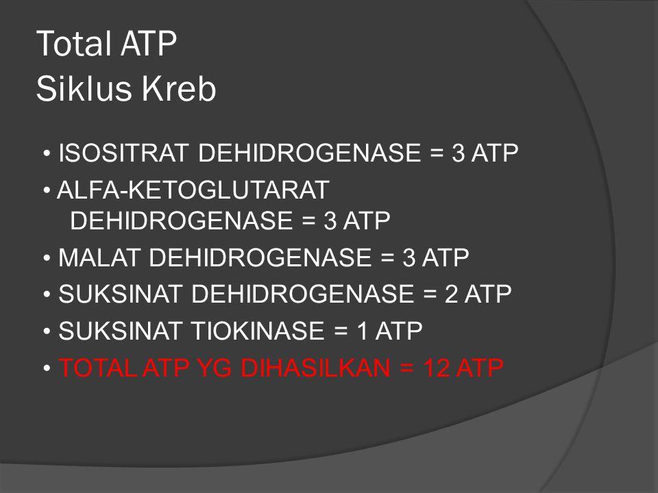 Total ATP Siklus Kreb