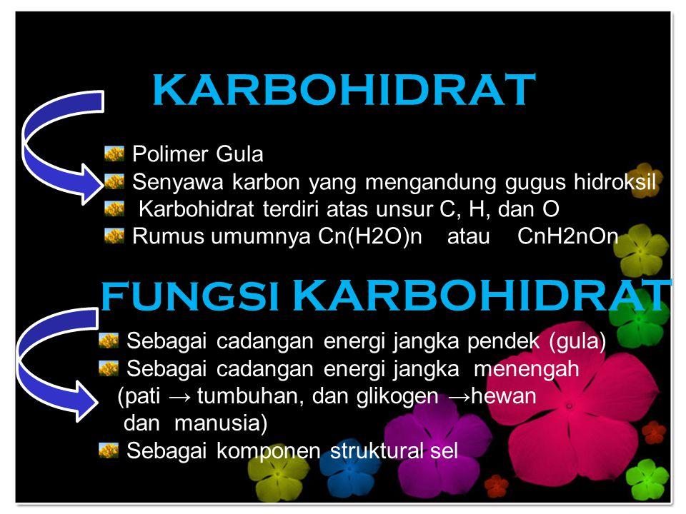 KARBOHIDRAT FUNGSI KARBOHIDRAT Polimer Gula