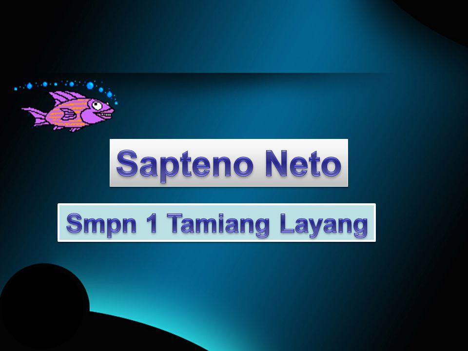 Sapteno Neto Smpn 1 Tamiang Layang