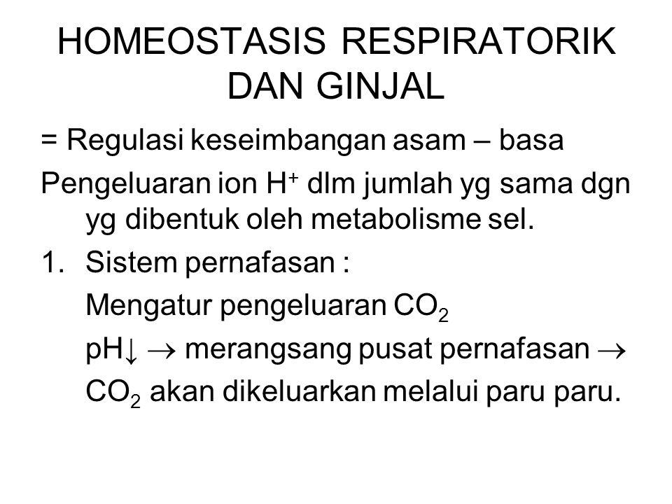 HOMEOSTASIS RESPIRATORIK DAN GINJAL