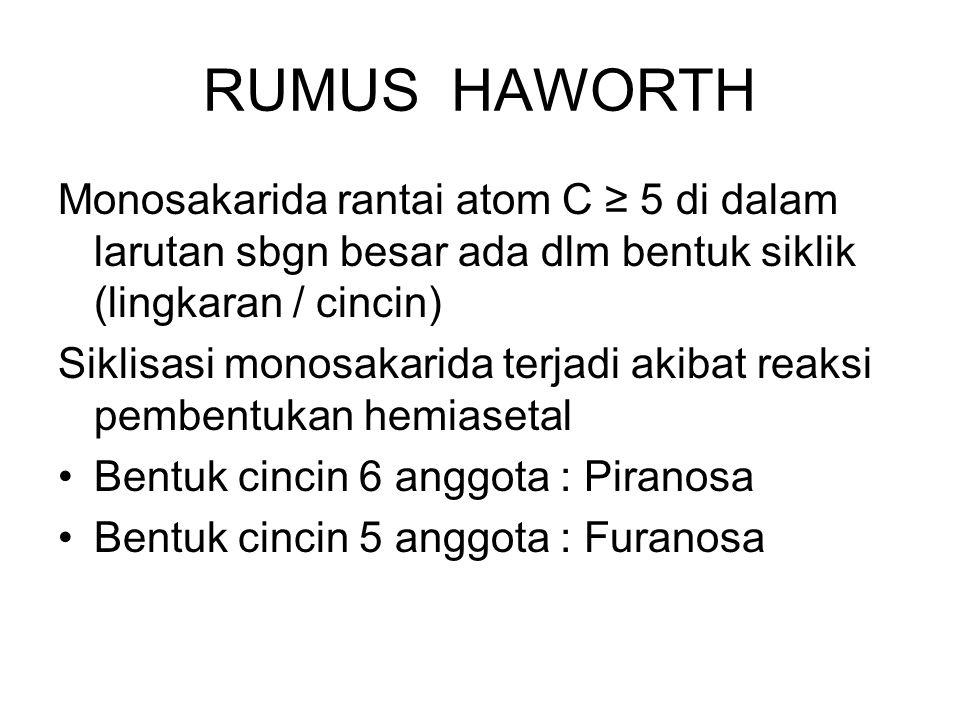RUMUS HAWORTH Monosakarida rantai atom C ≥ 5 di dalam larutan sbgn besar ada dlm bentuk siklik (lingkaran / cincin)