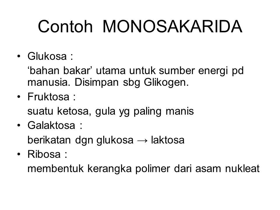 Contoh MONOSAKARIDA Glukosa :