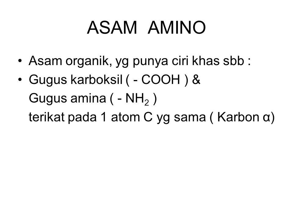 ASAM AMINO Asam organik, yg punya ciri khas sbb :