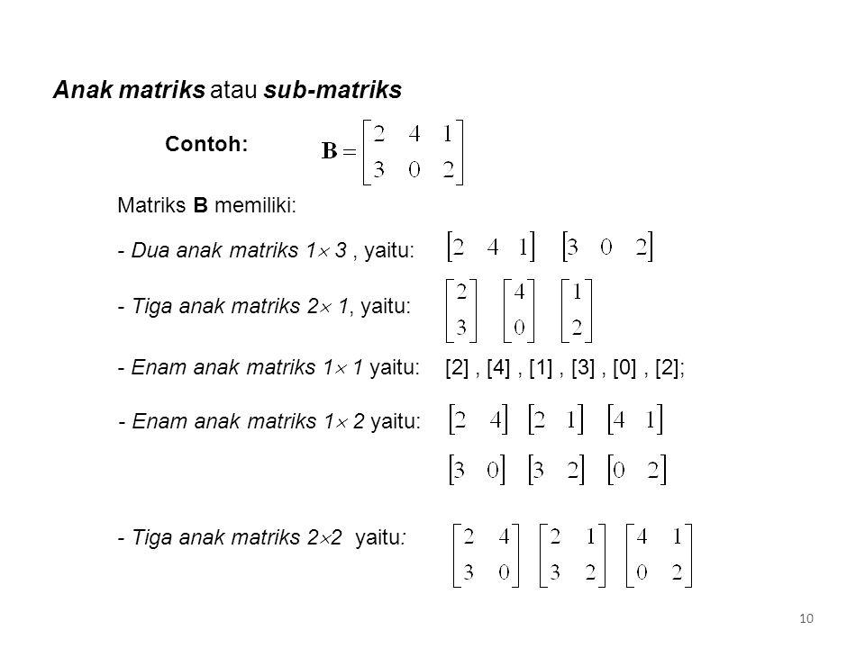 Anak matriks atau sub-matriks