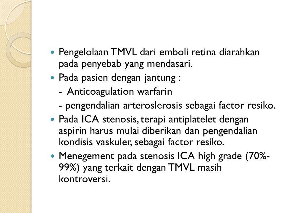 Pengelolaan TMVL dari emboli retina diarahkan pada penyebab yang mendasari.