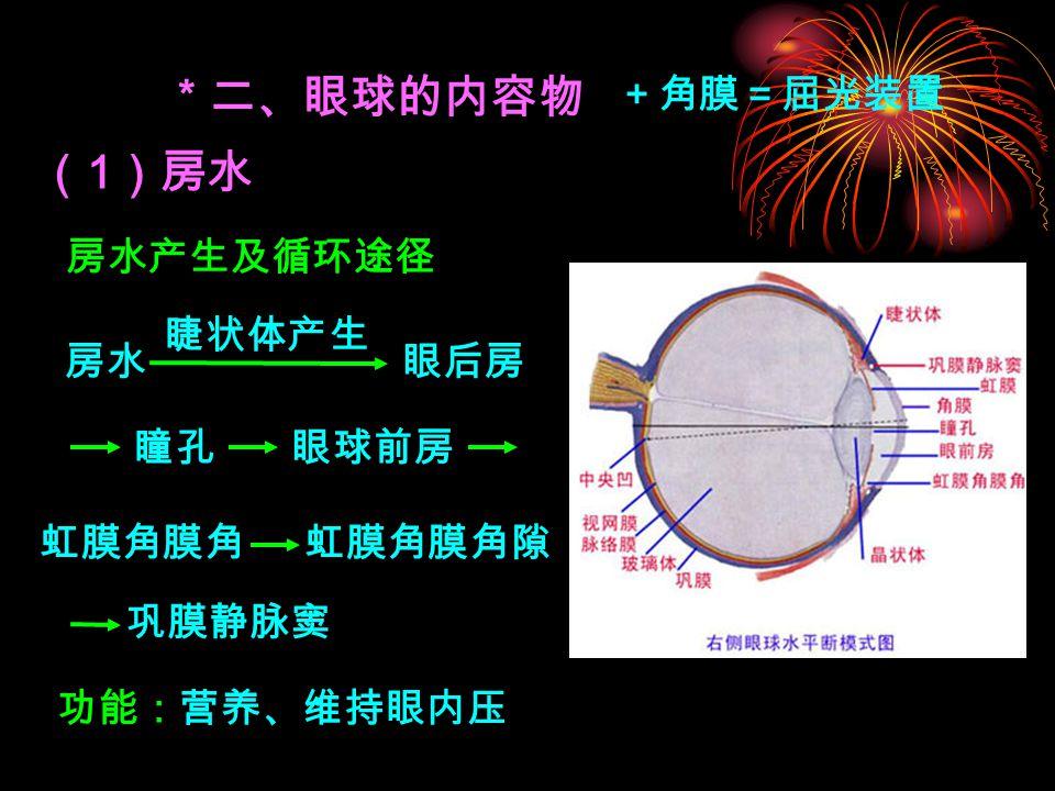 * 二、眼球的内容物 (1)房水 +角膜=屈光装置 房水产生及循环途径 睫状体产生 房水 眼后房 瞳孔 眼球前房 虹膜角膜角 虹膜角膜角隙