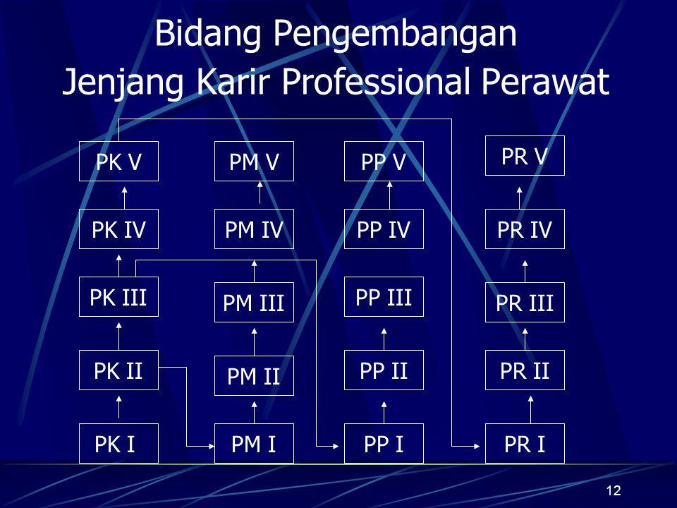 Bidang Pengembangan Jenjang Karir Professional Perawat