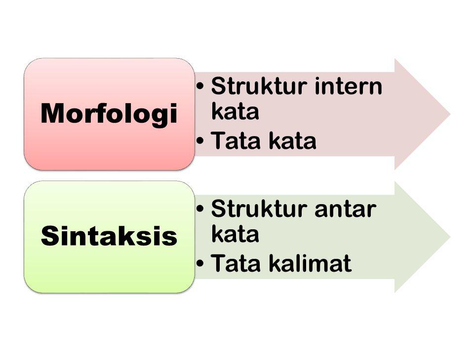 Morfologi Sintaksis Struktur intern kata Tata kata Struktur antar kata