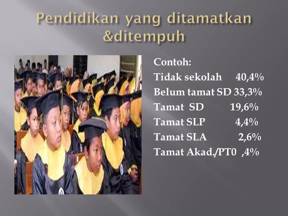 Pendidikan yang ditamatkan &ditempuh