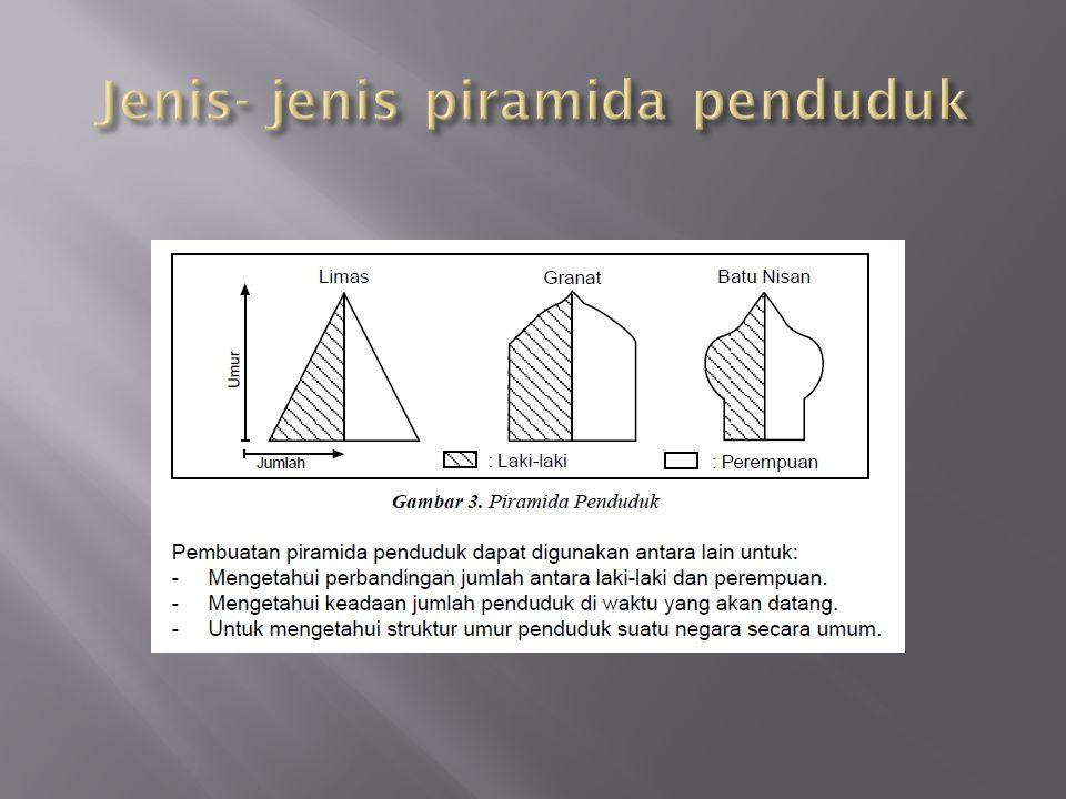 Jenis- jenis piramida penduduk
