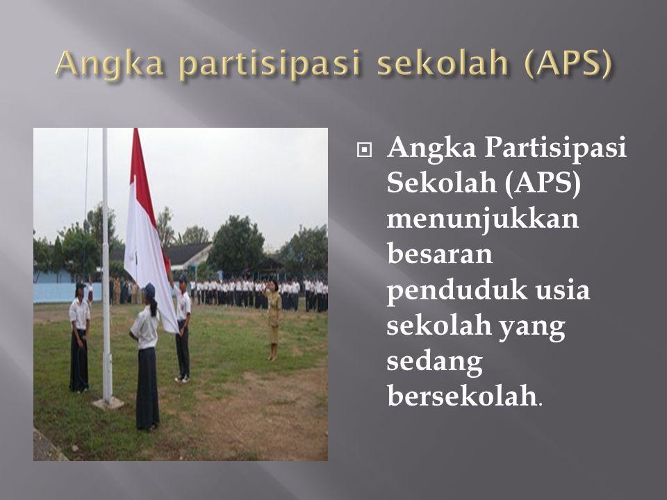 Angka partisipasi sekolah (APS)