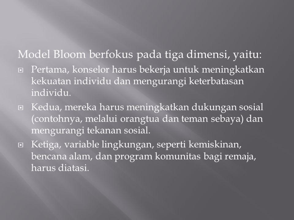 Model Bloom berfokus pada tiga dimensi, yaitu: