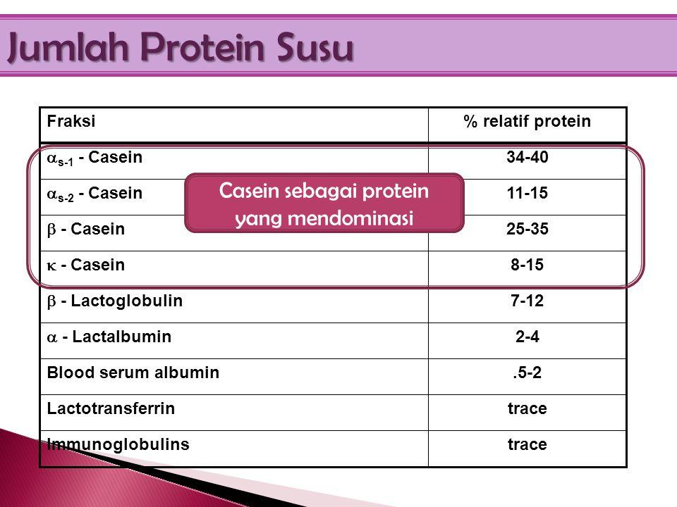 Casein sebagai protein yang mendominasi