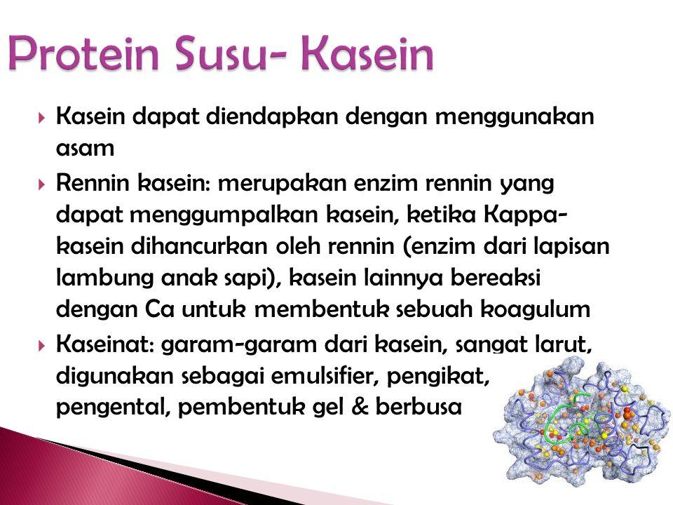 Protein Susu- Kasein Kasein dapat diendapkan dengan menggunakan asam