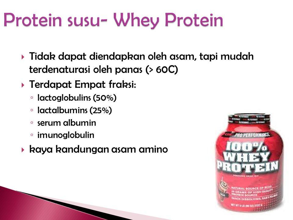 Protein susu- Whey Protein
