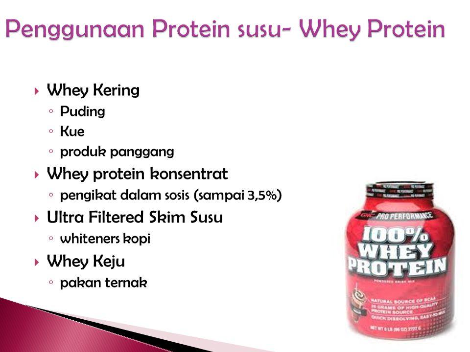 Penggunaan Protein susu- Whey Protein