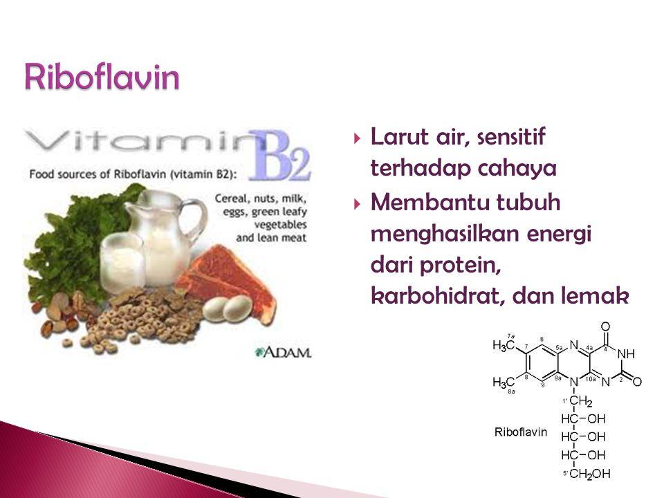 Riboflavin Larut air, sensitif terhadap cahaya