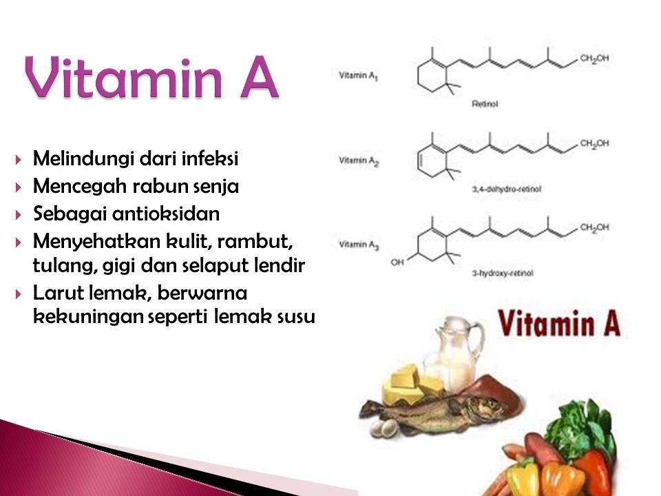 Vitamin A Melindungi dari infeksi Mencegah rabun senja