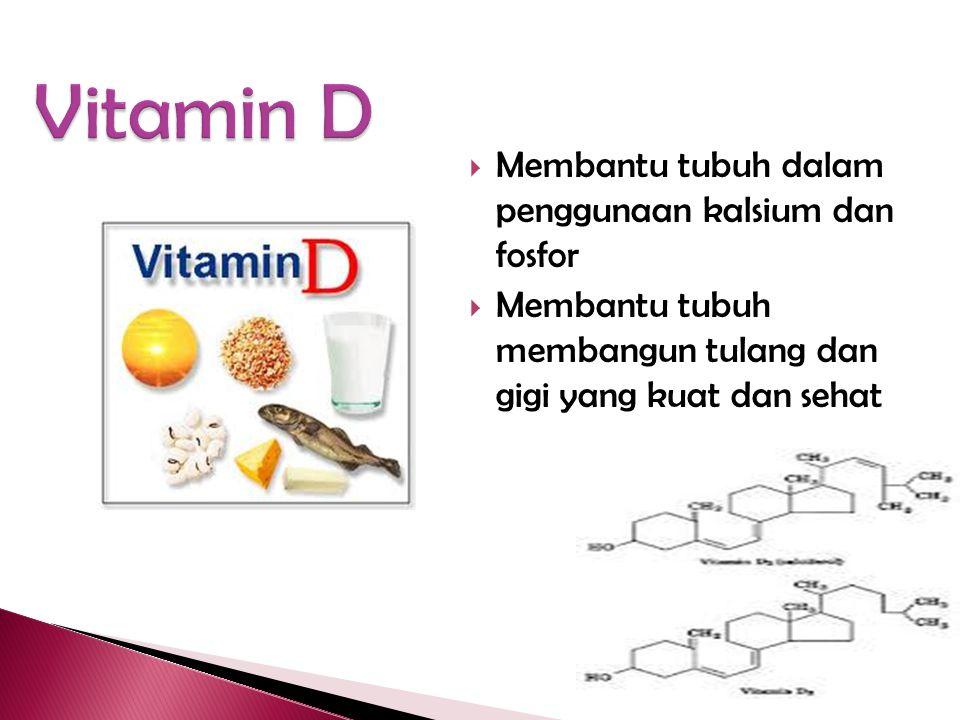 Vitamin D Membantu tubuh dalam penggunaan kalsium dan fosfor
