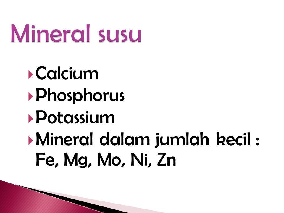 Mineral susu Calcium Phosphorus Potassium