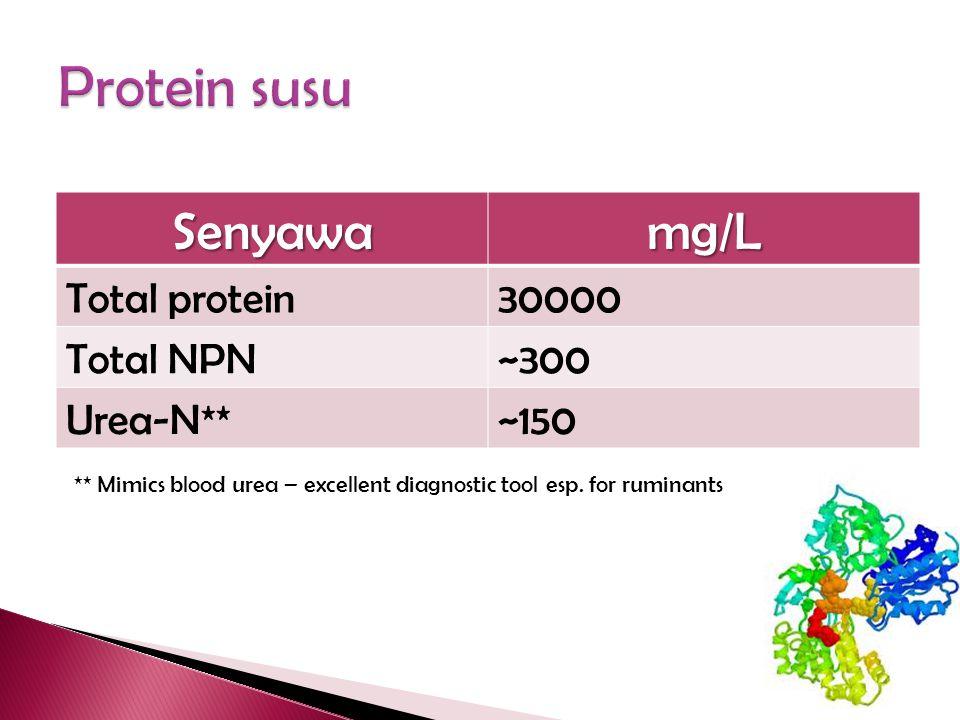 Protein susu Senyawa mg/L Total protein 30000 Total NPN ~300 Urea-N**