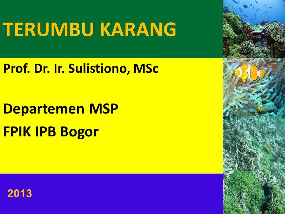 Prof. Dr. Ir. Sulistiono, MSc Departemen MSP FPIK IPB Bogor