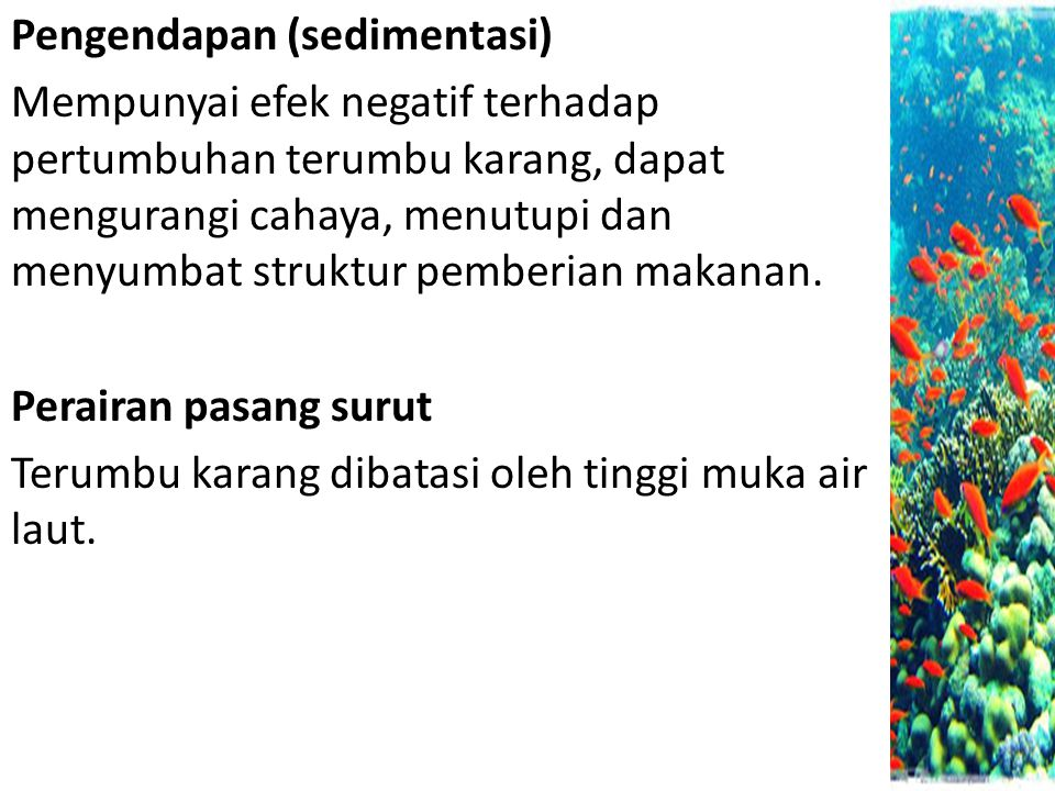 Pengendapan (sedimentasi)