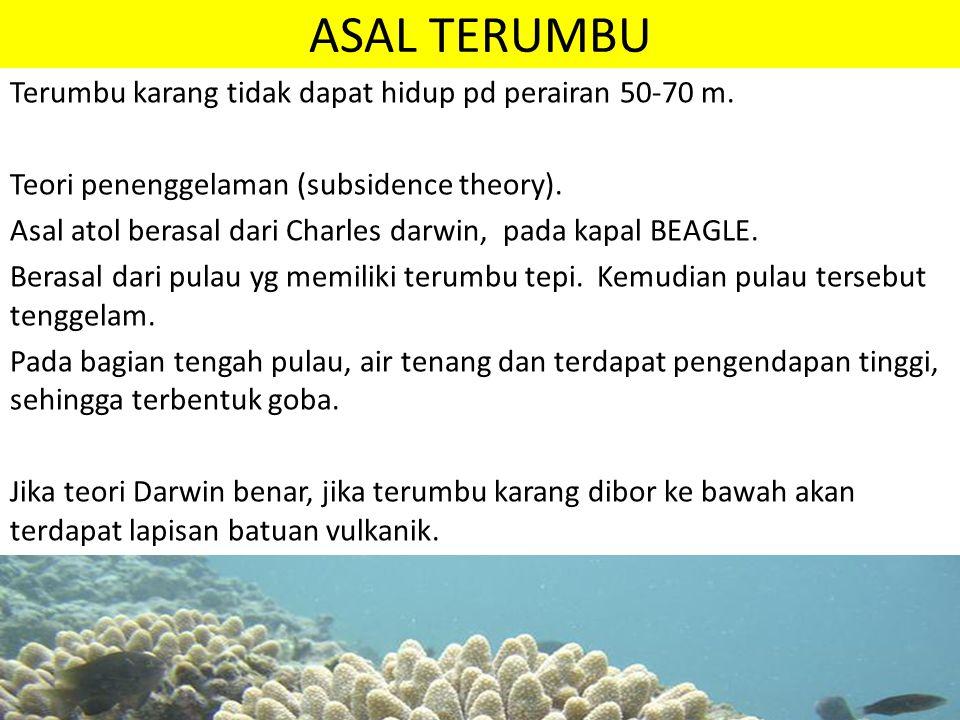 ASAL TERUMBU Terumbu karang tidak dapat hidup pd perairan 50-70 m.