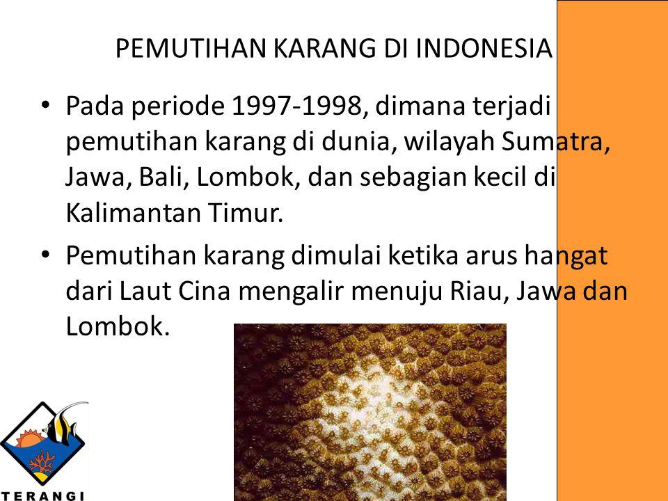 PEMUTIHAN KARANG DI INDONESIA