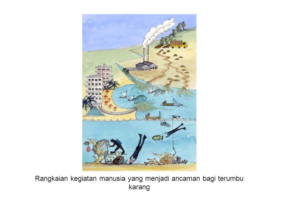 Rangkaian kegiatan manusia yang menjadi ancaman bagi terumbu karang