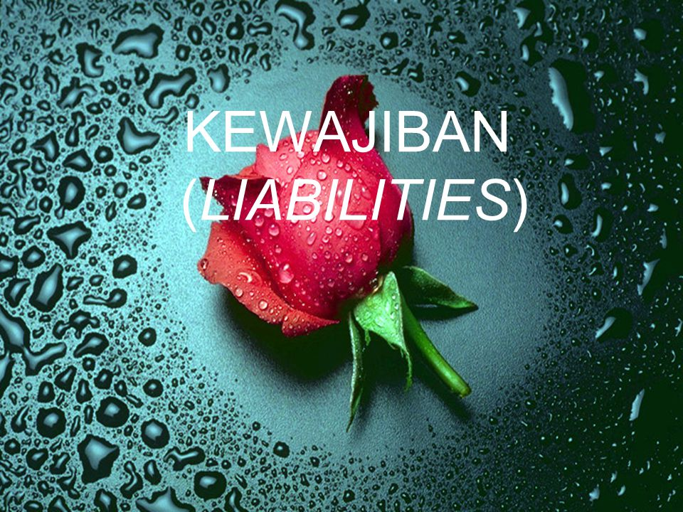 KEWAJIBAN (LIABILITIES)
