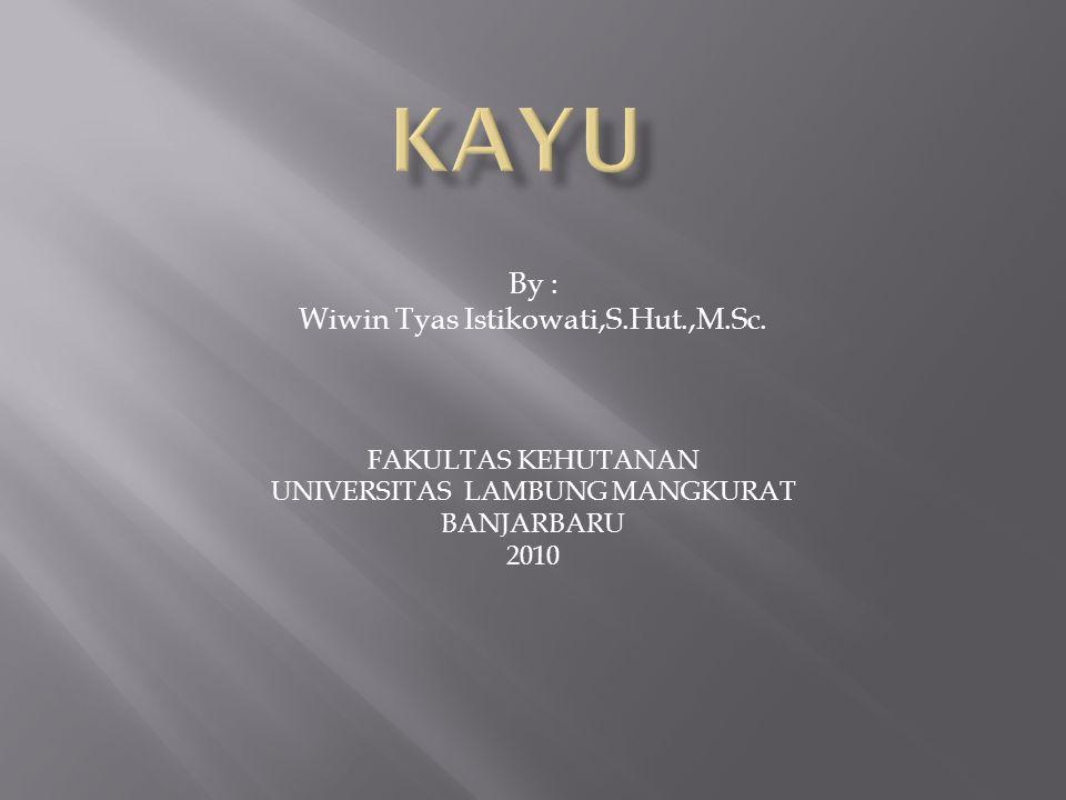 KAYU By : Wiwin Tyas Istikowati,S.Hut.,M.Sc. FAKULTAS KEHUTANAN