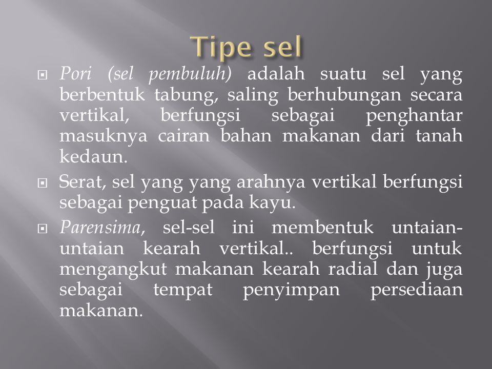 Tipe sel