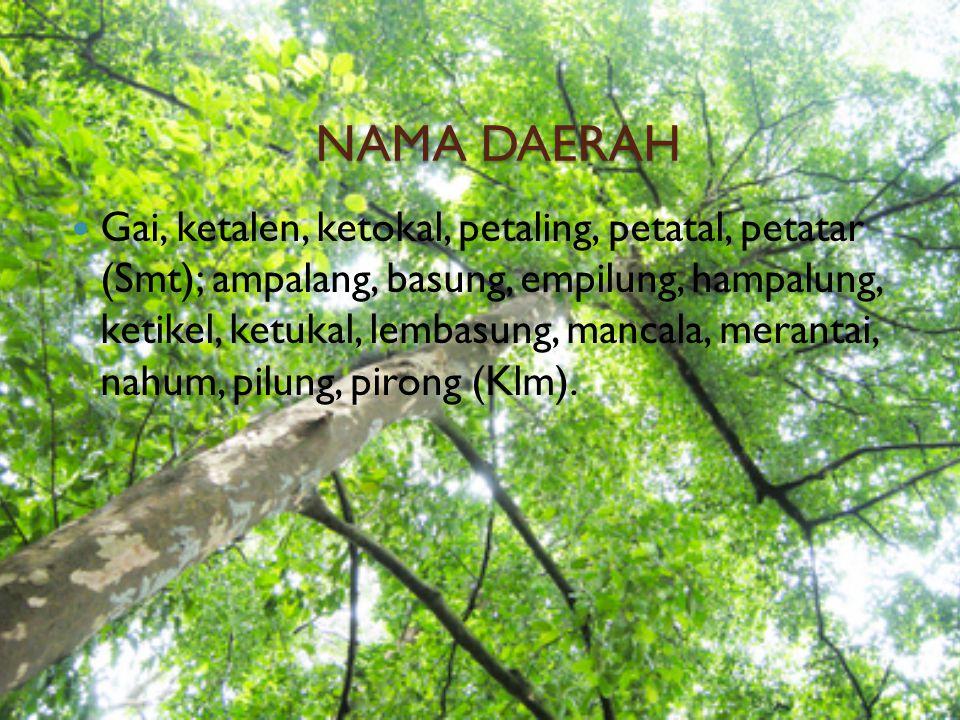 NAMA DAERAH