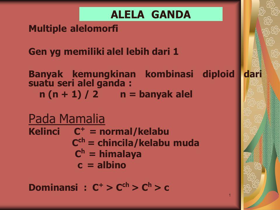Pada Mamalia ALELA GANDA Multiple alelomorfi