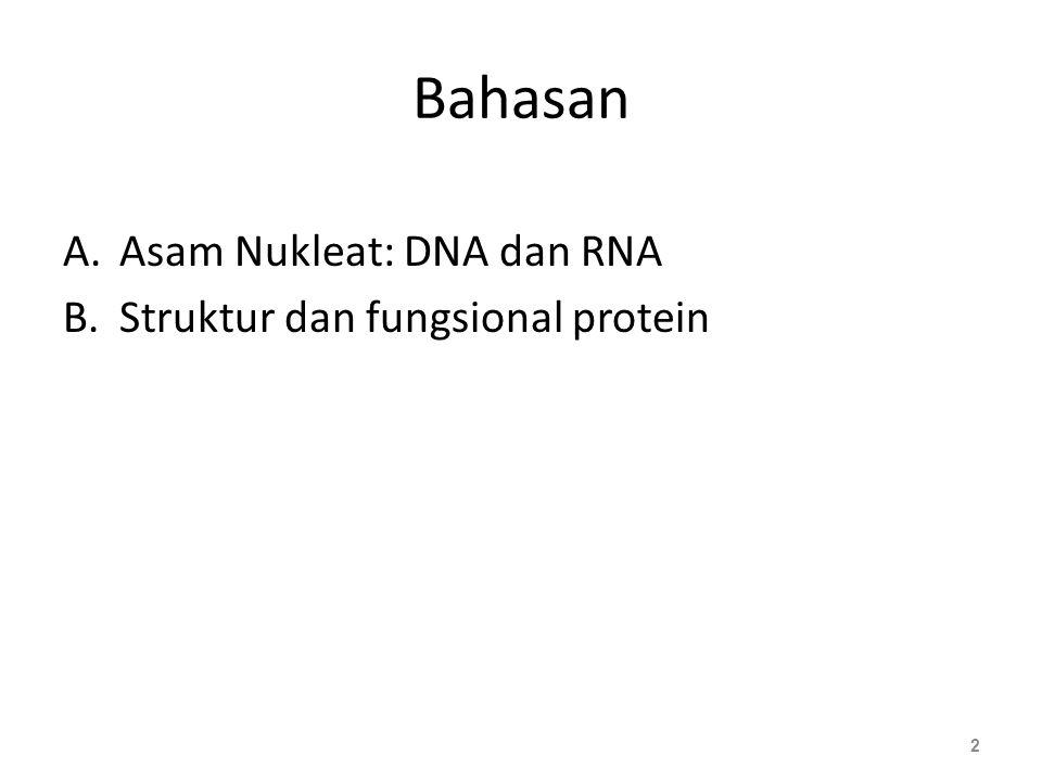 Bahasan Asam Nukleat: DNA dan RNA Struktur dan fungsional protein