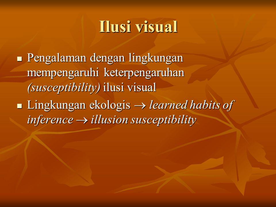 Ilusi visual Pengalaman dengan lingkungan mempengaruhi keterpengaruhan (susceptibility) ilusi visual.